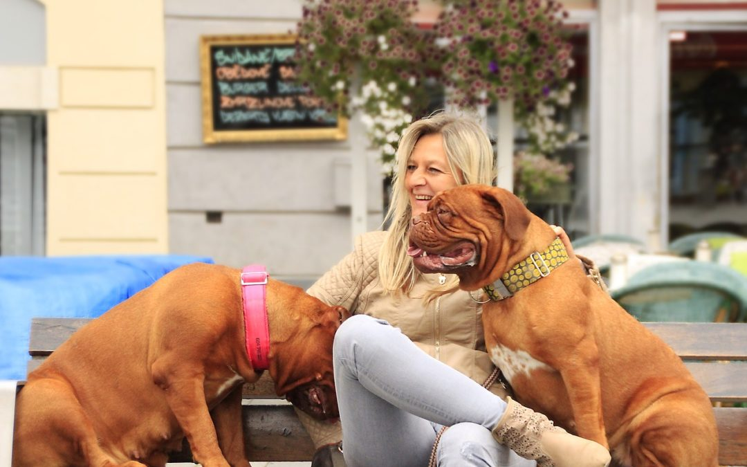 Masz dwa psy i chcesz wyjść na spacer? Sprawdź jak!